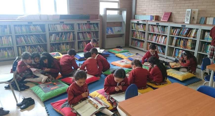 Curso grátis de Biblioteca Escolar