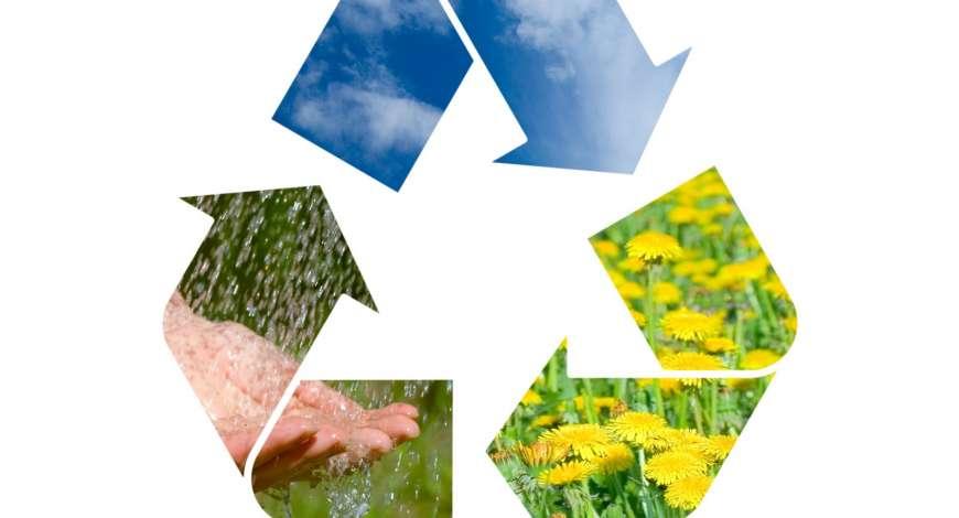 Curso grátis de Educação Ambiental