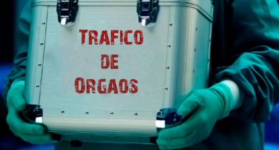 Combate ao Tráfico de Órgãos